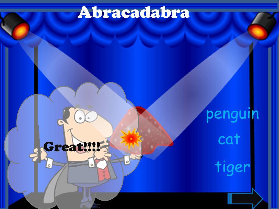Great!!!! Abracadabra bear leopard chicken