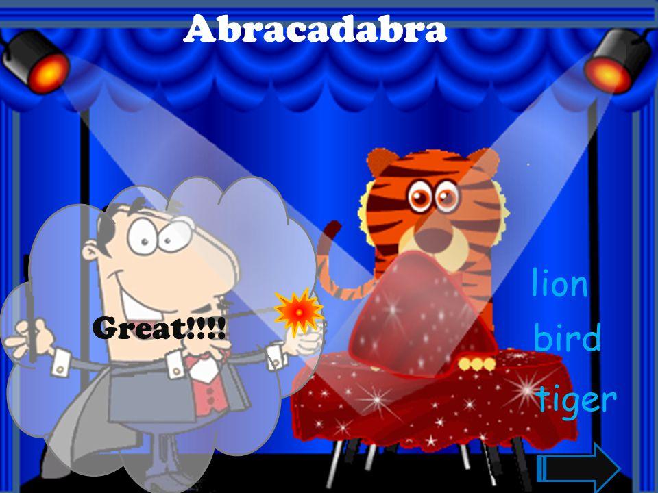 Great!!!! Abracadabra giraffe cat tiger