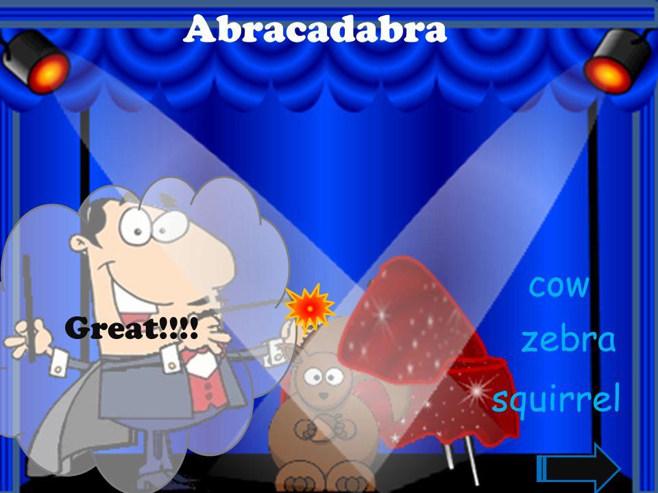 Abracadabra Great!!!! tiger bird lion