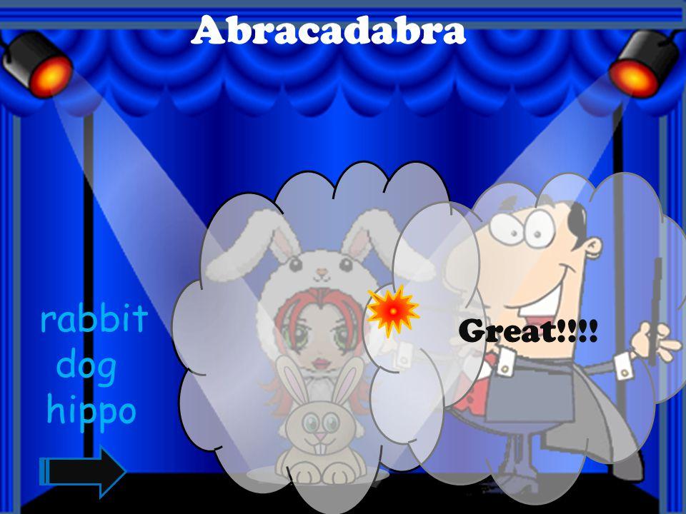 Abracadabra Great!!!! squirrel zebra cow