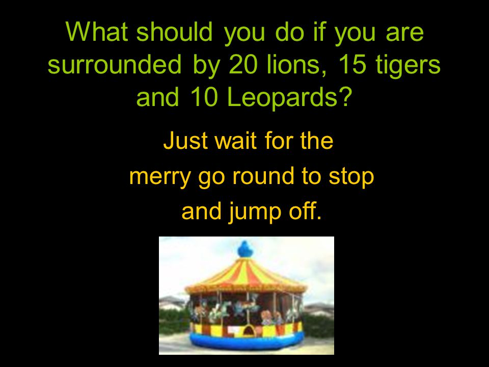 What should you do if you are surrounded by 20 lions, 15 tigers and 10 Leopards.