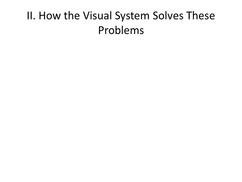 II. How the Visual System Solves These Problems