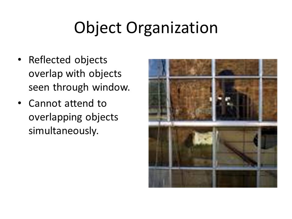 Object Organization Reflected objects overlap with objects seen through window.