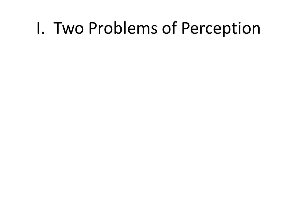 I. Two Problems of Perception