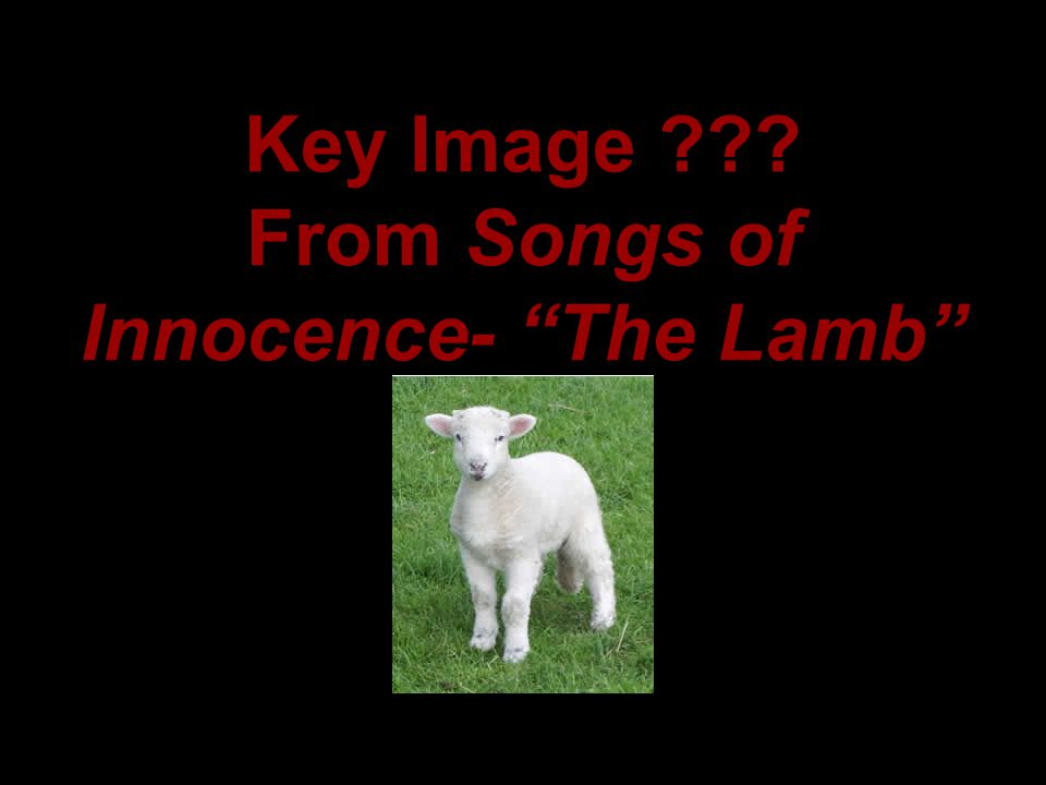 """Key Image ??? From Songs of Innocence- """"The Lamb"""""""