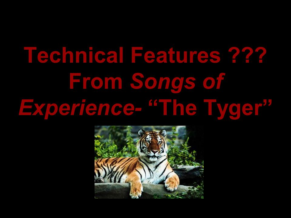 """Technical Features ??? From Songs of Experience- """"The Tyger"""""""