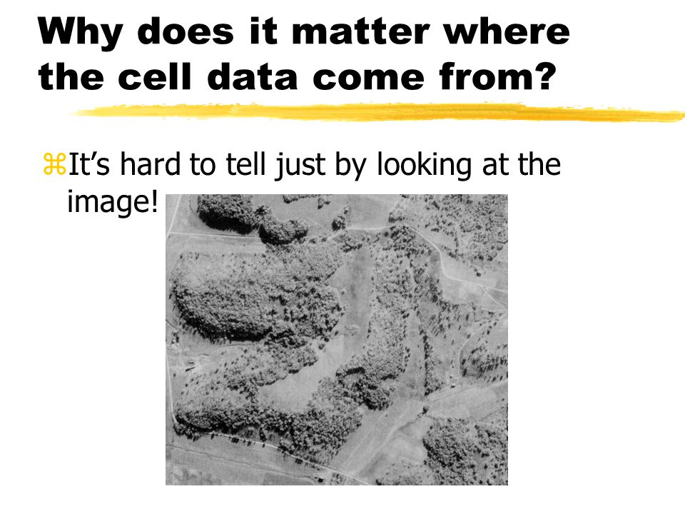 From where are the data in a raster cell taken?