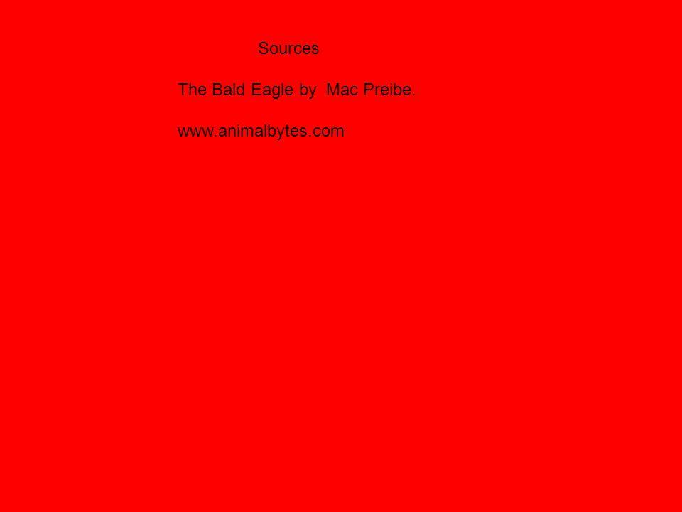 Sources The Bald Eagle by Mac Preibe. www.animalbytes.com