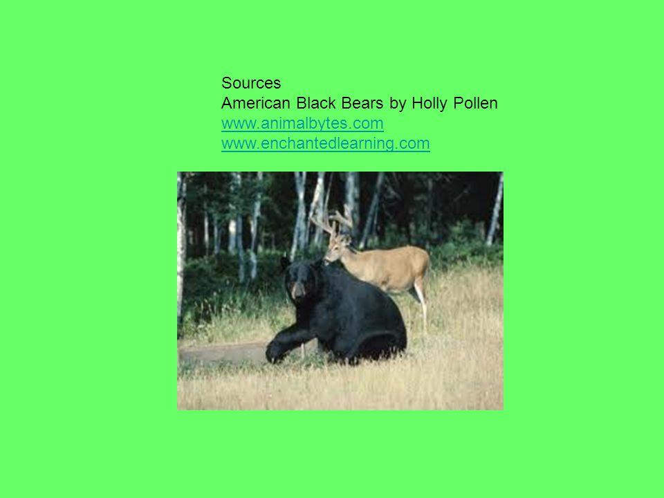 Sources American Black Bears by Holly Pollen www.animalbytes.com www.enchantedlearning.com