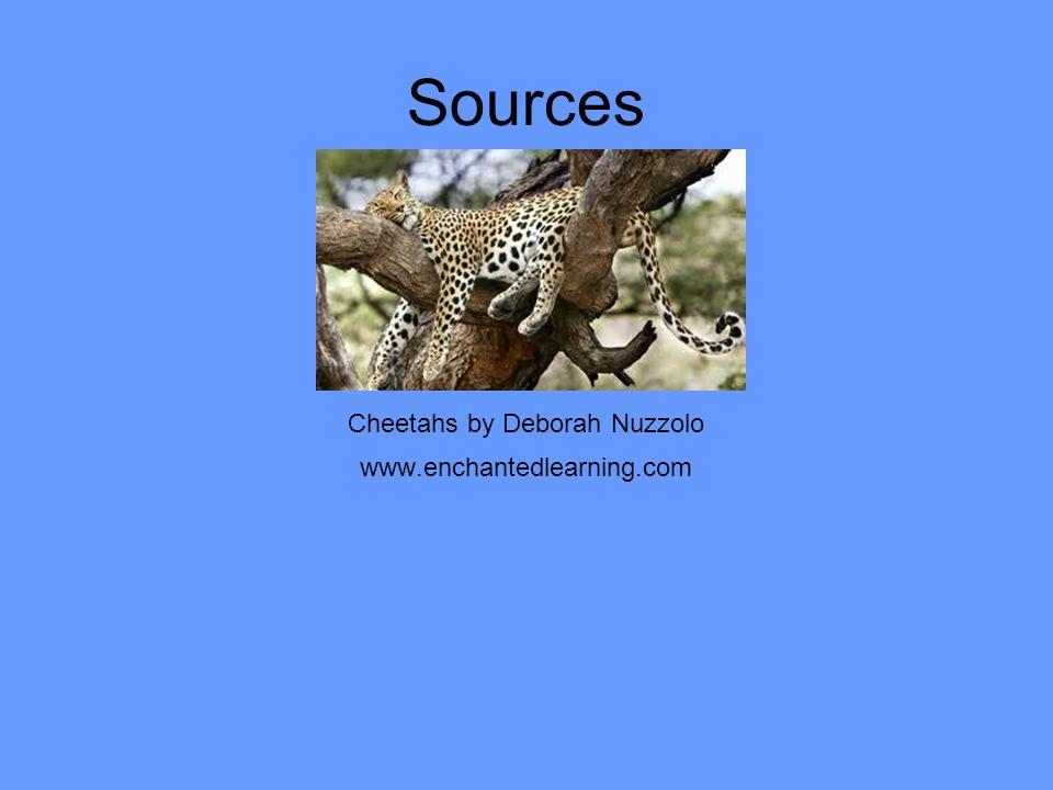 Sources Cheetahs by Deborah Nuzzolo www.enchantedlearning.com