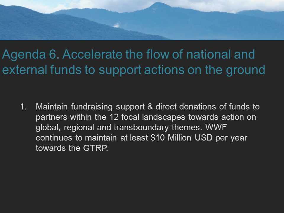 Agenda 6. Accelerate the flow of national and external funds to support actions on the ground 1.Maintain fundraising support & direct donations of fun