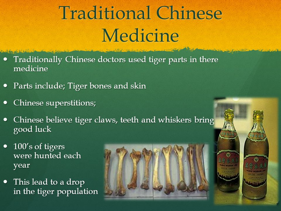 Traditional Chinese Medicine Traditionally Chinese doctors used tiger parts in there medicine Traditionally Chinese doctors used tiger parts in there