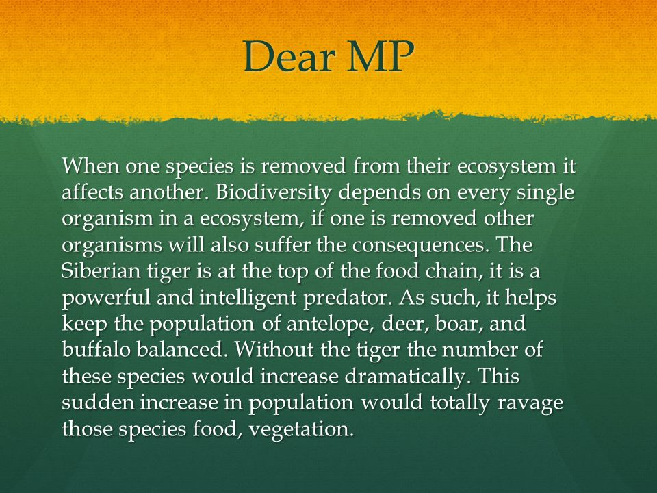 Is Biodiversity important.Firstly, what is biodiversity.