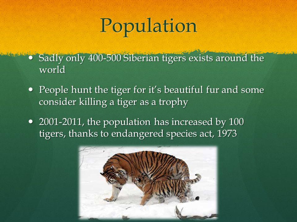 Similarities with lion, jaguar, and leopard