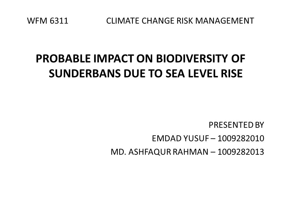 WFM 6311 CLIMATE CHANGE RISK MANAGEMENT PROBABLE IMPACT ON BIODIVERSITY OF SUNDERBANS DUE TO SEA LEVEL RISE PRESENTED BY EMDAD YUSUF – 1009282010 MD.