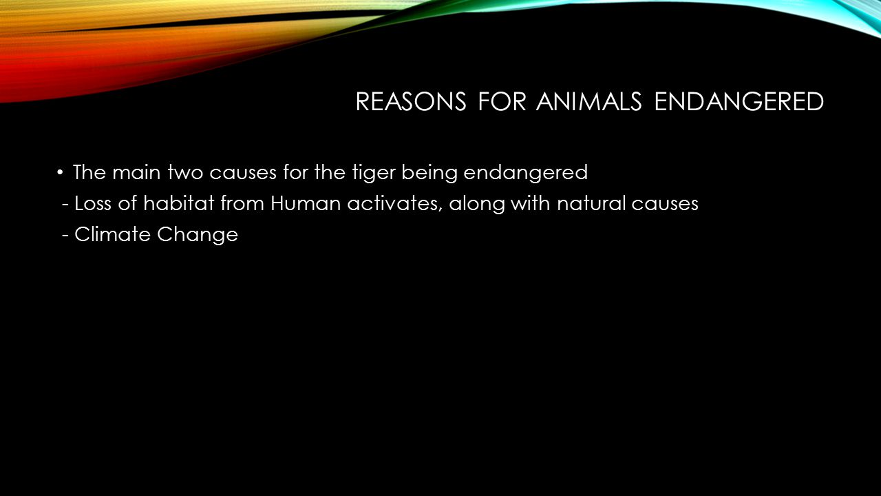 CAN ITS EXTINCTION BE PREVENTED.IF SO, HOW.