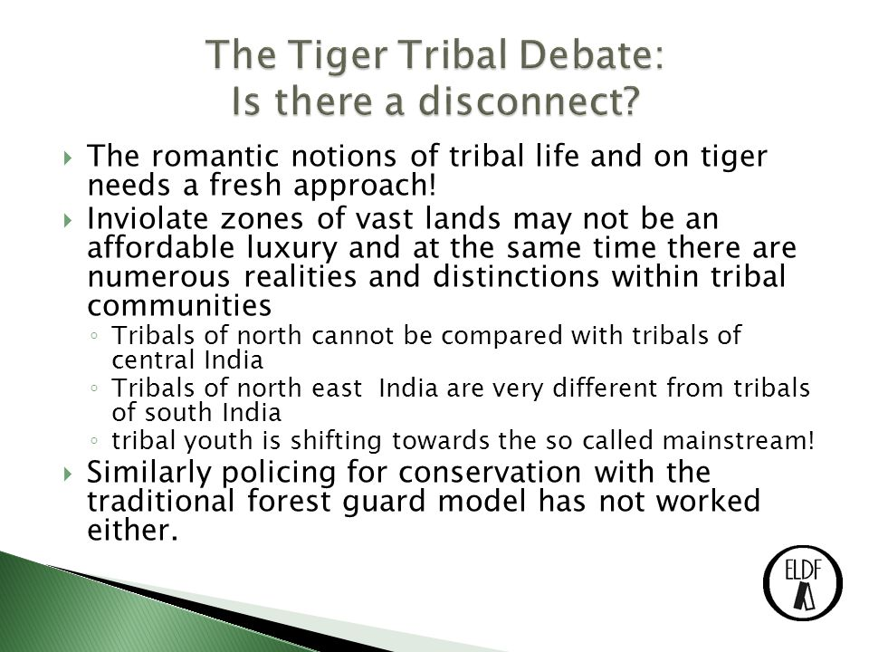  The romantic notions of tribal life and on tiger needs a fresh approach.