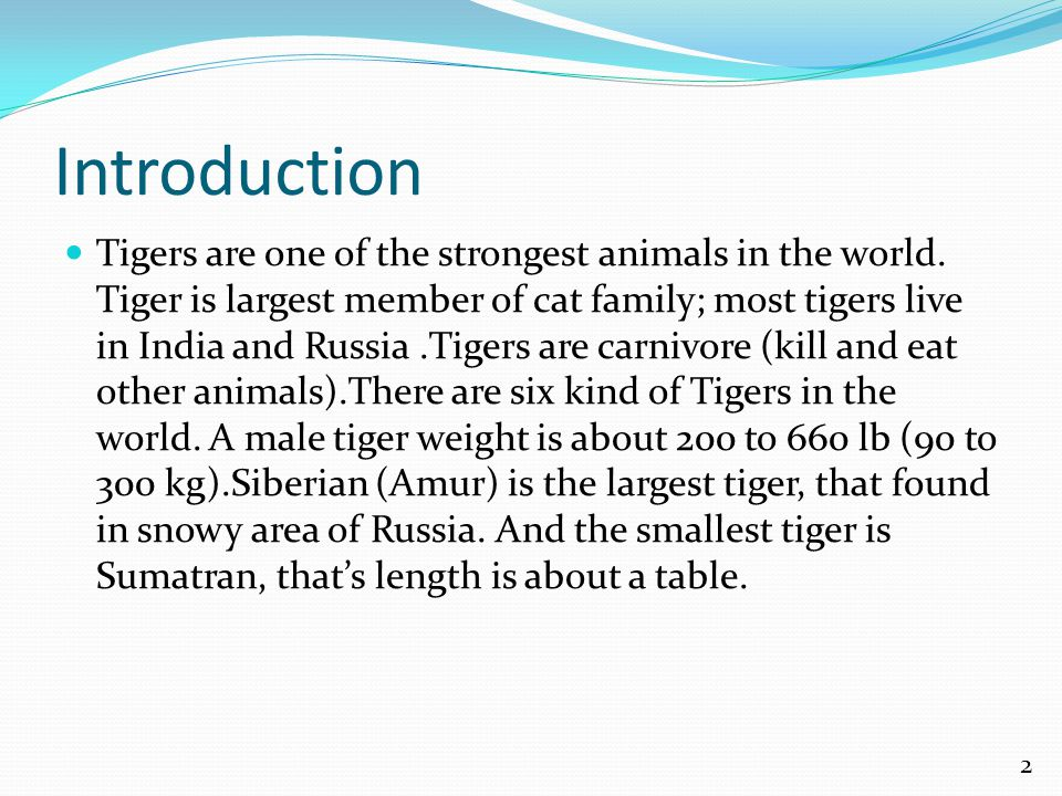 Introduction Tigers are one of the strongest animals in the world.
