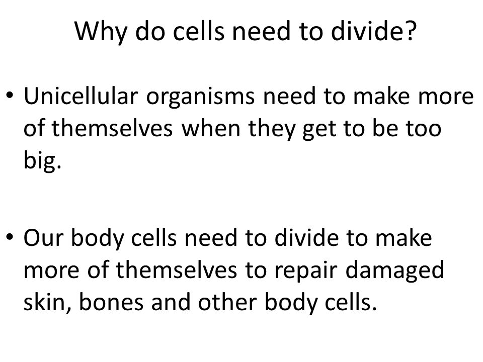 Why do cells need to divide? Unicellular organisms need to make more of themselves when they get to be too big. Our body cells need to divide to make