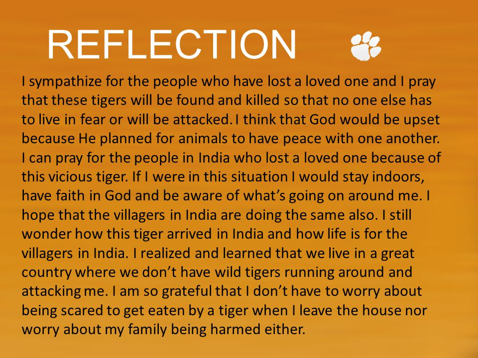 REFLECTION I sympathize for the people who have lost a loved one and I pray that these tigers will be found and killed so that no one else has to live in fear or will be attacked.