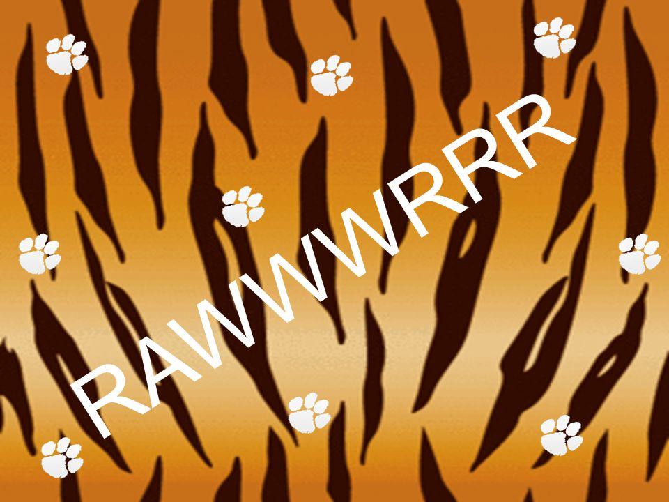 RAWWWRRR