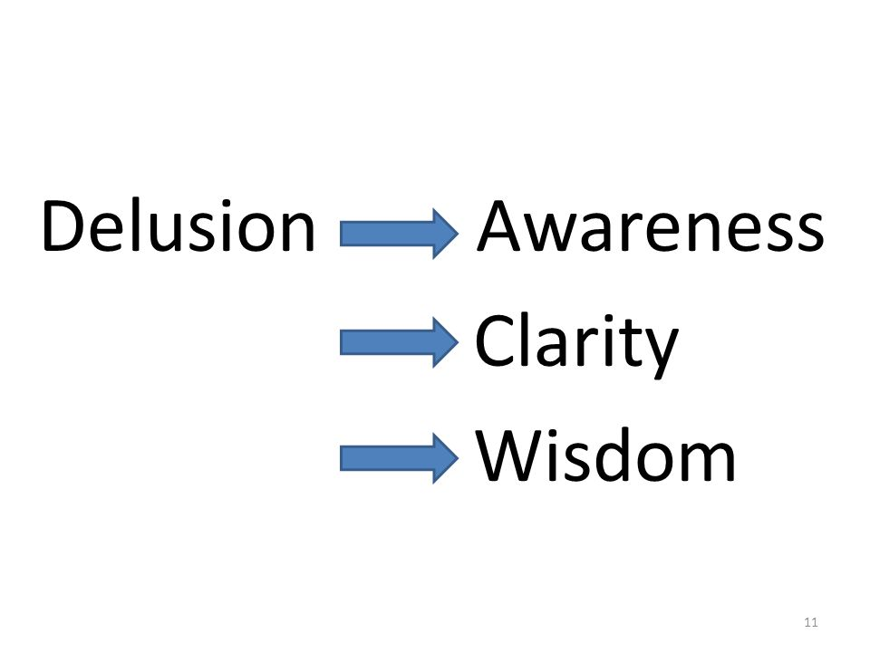 Delusion Awareness Clarity Wisdom 11