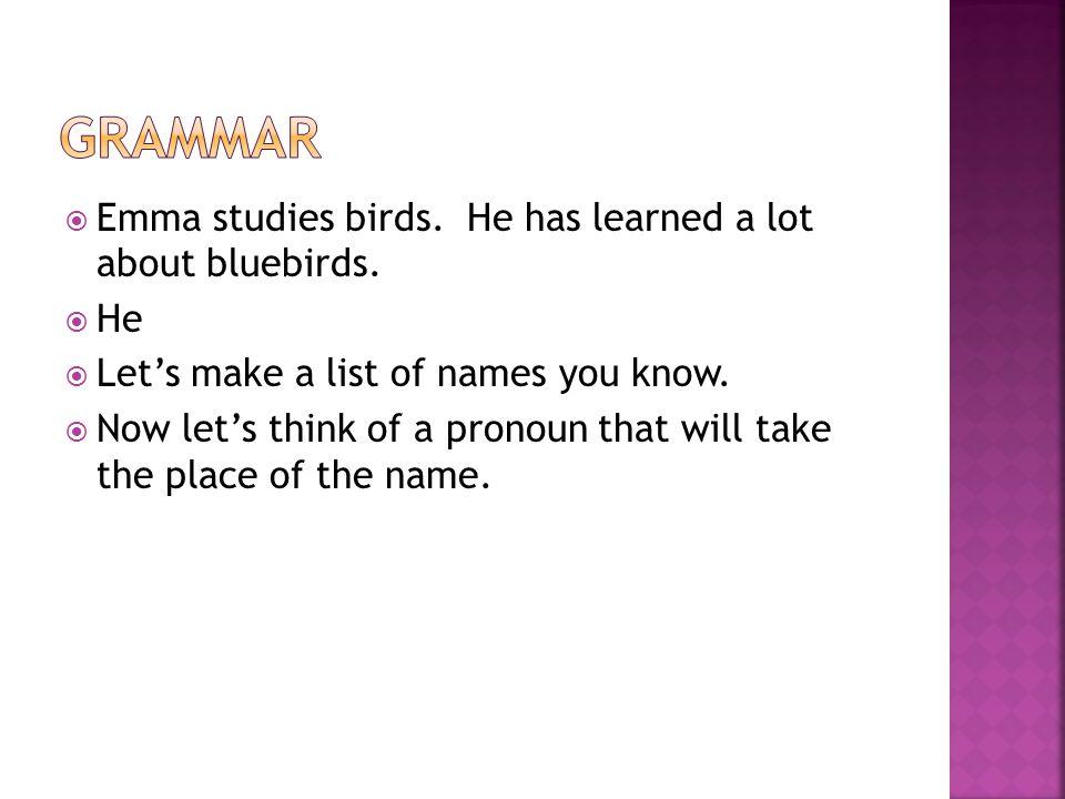  Emma studies birds. He has learned a lot about bluebirds.