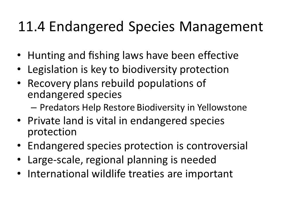 11.4 Endangered Species Management Hunting and fishing laws have been effective Legislation is key to biodiversity protection Recovery plans rebuild po