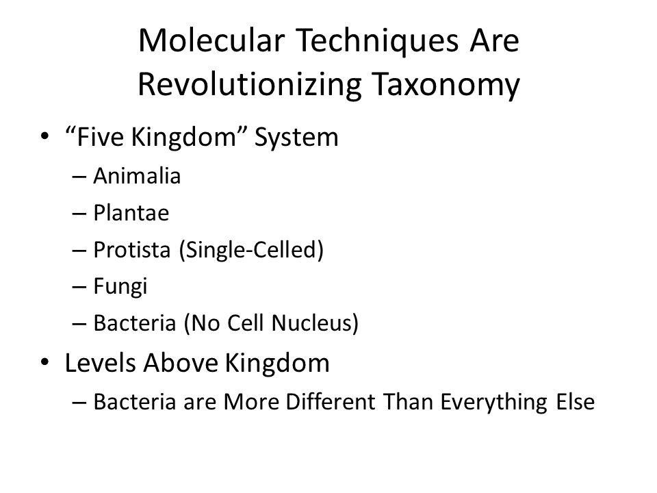 "Molecular Techniques Are Revolutionizing Taxonomy ""Five Kingdom"" System – Animalia – Plantae – Protista (Single-Celled) – Fungi – Bacteria (No Cell Nu"