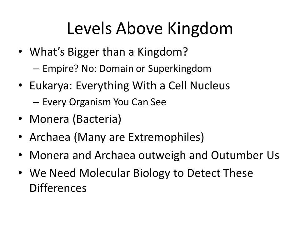 Levels Above Kingdom What's Bigger than a Kingdom.