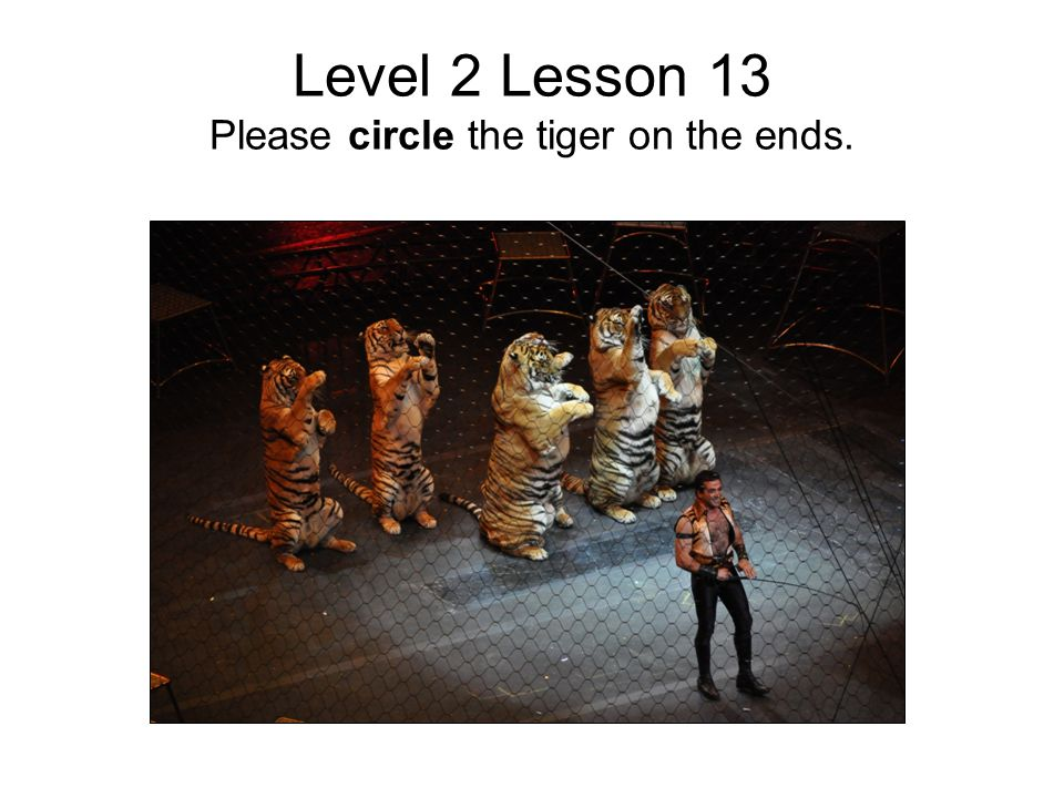 Level 2 Lesson 13 Please circle the tiger on the ends.