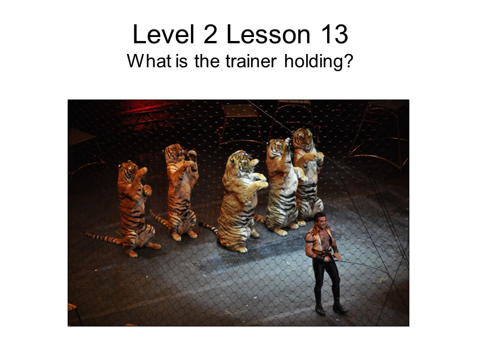 Level 2 Lesson 13 What is the trainer holding