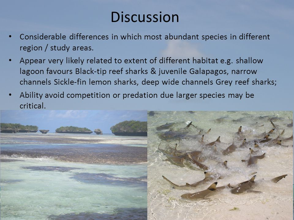 Discussion Considerable differences in which most abundant species in different region / study areas.