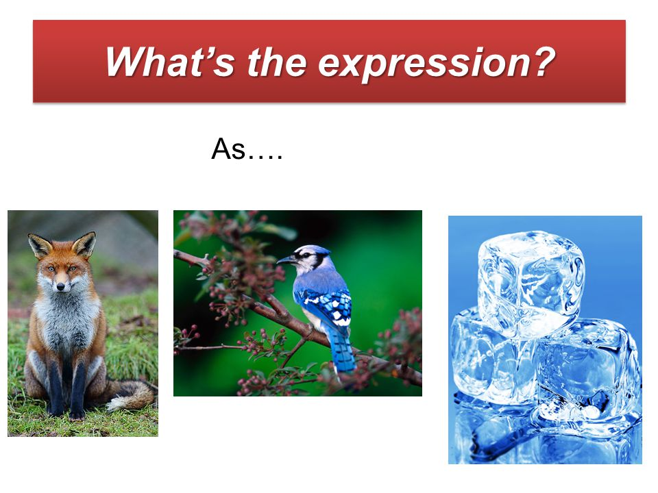 What's the expression As….