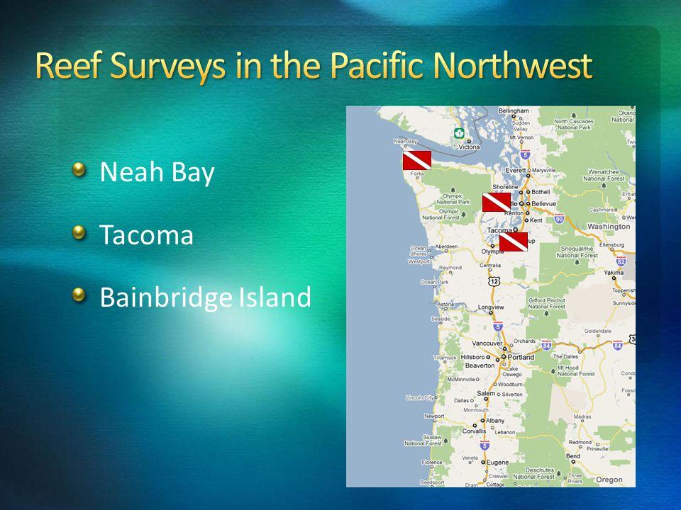 Neah Bay Tacoma Bainbridge Island
