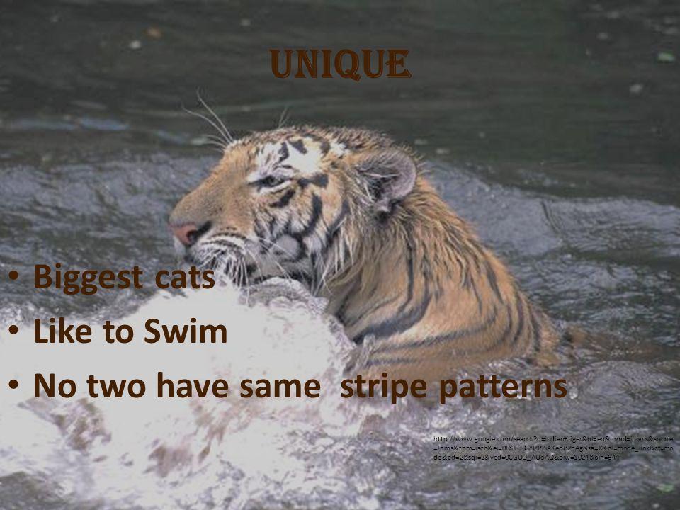 Positive Efforts Creating awareness National parks Indian Gov.