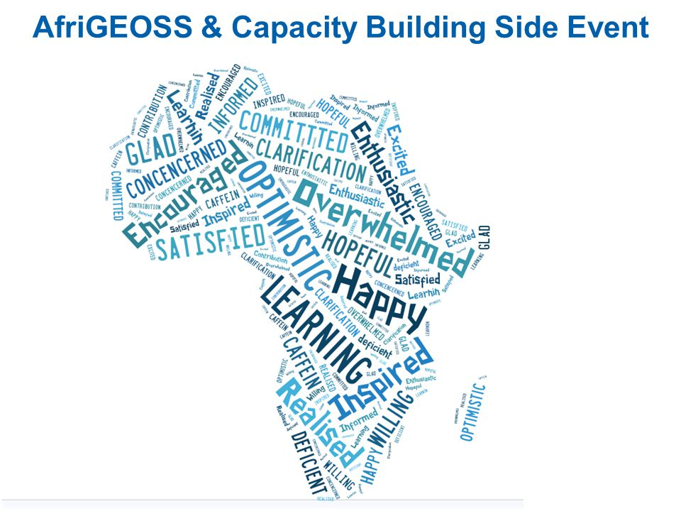 AfriGEOSS & Capacity Building Side Event