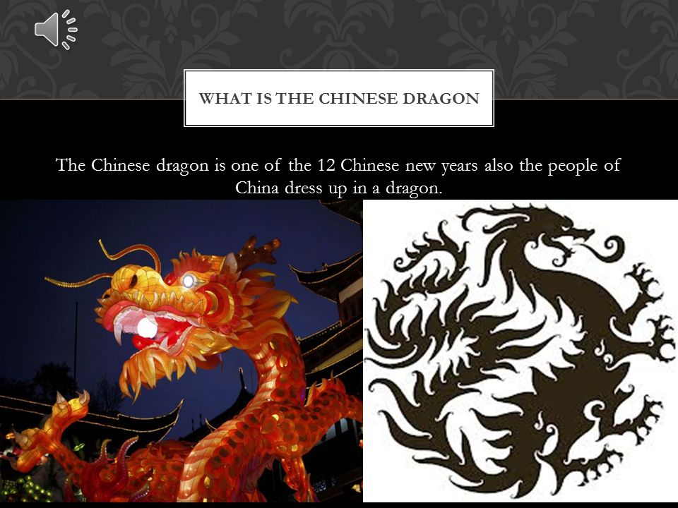The Chinese dragon is so popular because it went in a legendary race and came 7 th.