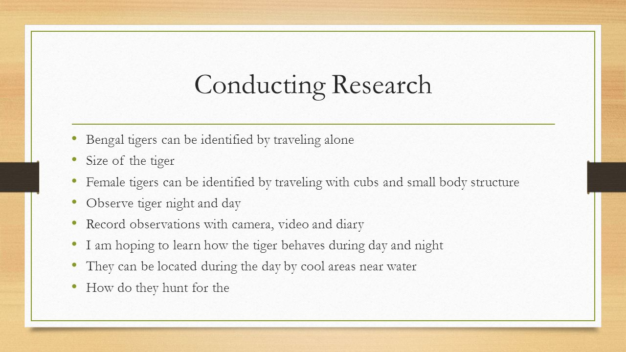 Conducting Research Bengal tigers can be identified by traveling alone Size of the tiger Female tigers can be identified by traveling with cubs and small body structure Observe tiger night and day Record observations with camera, video and diary I am hoping to learn how the tiger behaves during day and night They can be located during the day by cool areas near water How do they hunt for the