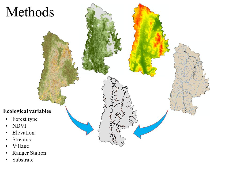 Methods Forest type NDVI Elevation Streams Village Ranger Station Substrate Ecological variables