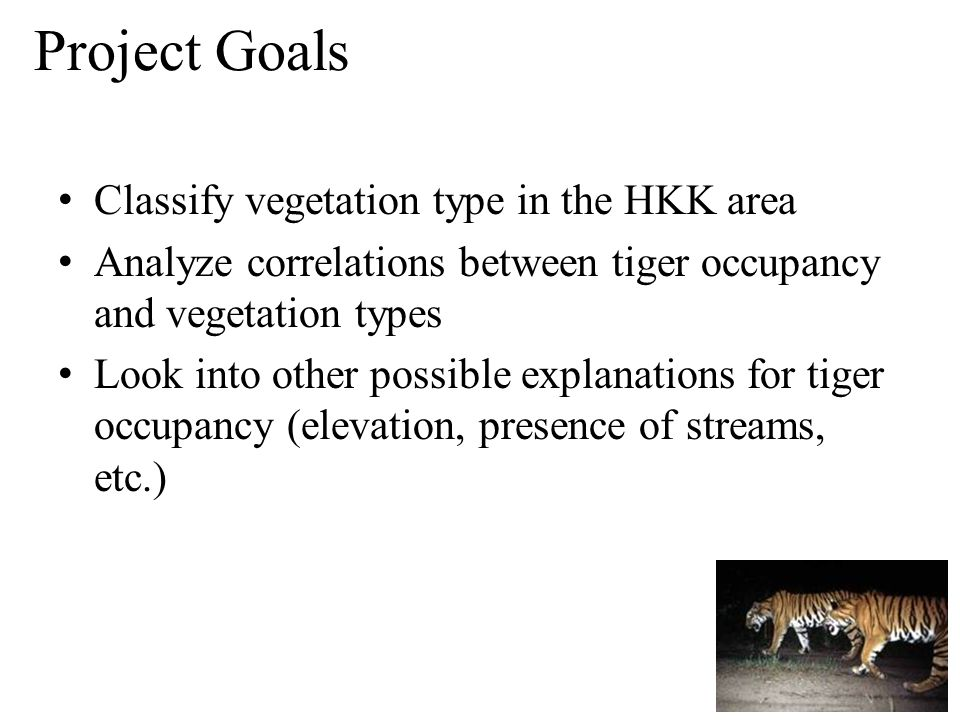 Classify vegetation type in the HKK area Analyze correlations between tiger occupancy and vegetation types Look into other possible explanations for tiger occupancy (elevation, presence of streams, etc.) Project Goals