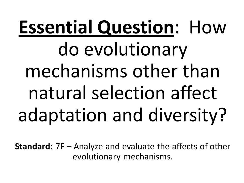 Essential Question: How do evolutionary mechanisms other than natural selection affect adaptation and diversity.
