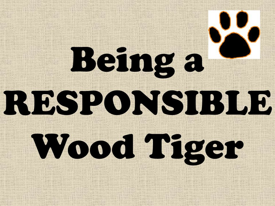 Being a RESPONSIBLE Wood Tiger
