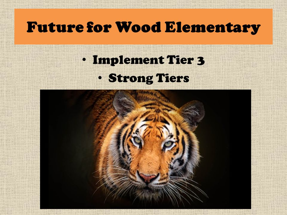 Future for Wood Elementary Implement Tier 3 Strong Tiers
