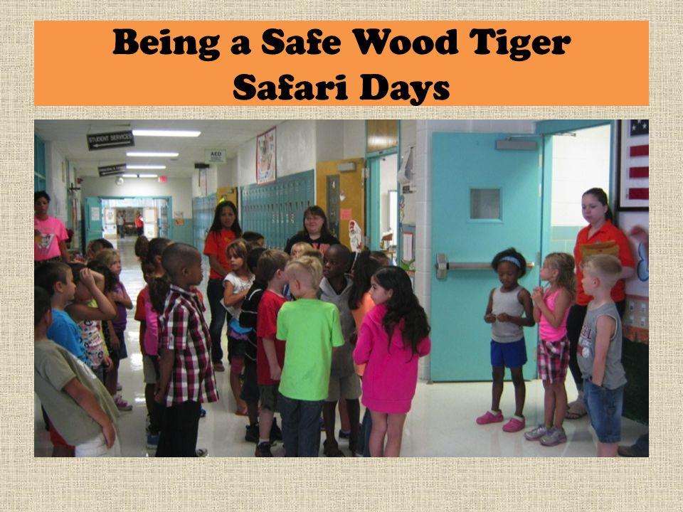 Being a Safe Wood Tiger Safari Days