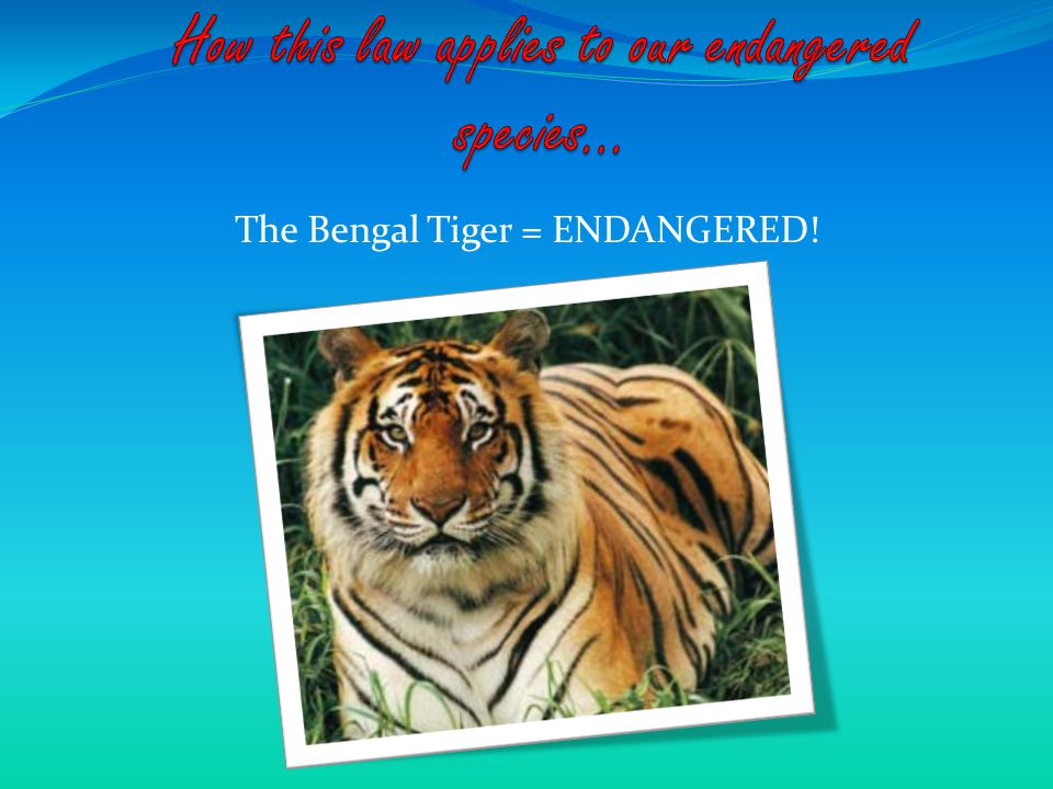 The list of endangered species is always changing.