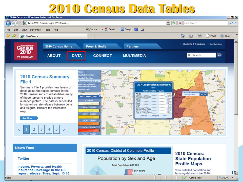 2010 Census Data Tables 13