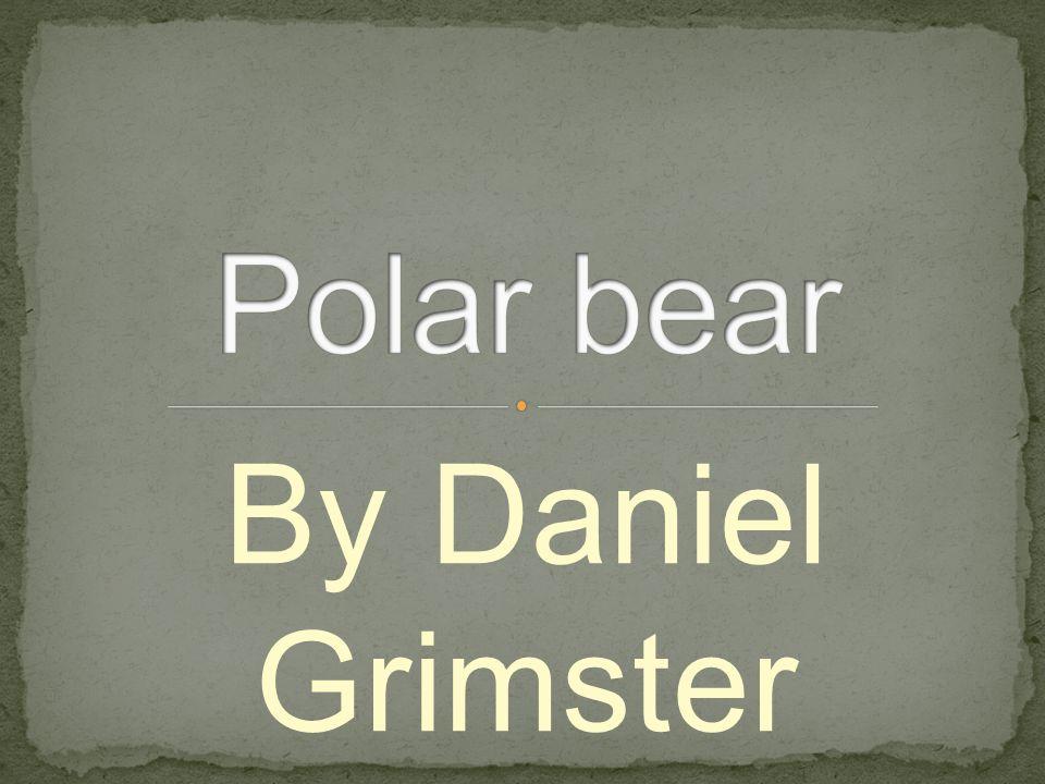 By Daniel Grimster