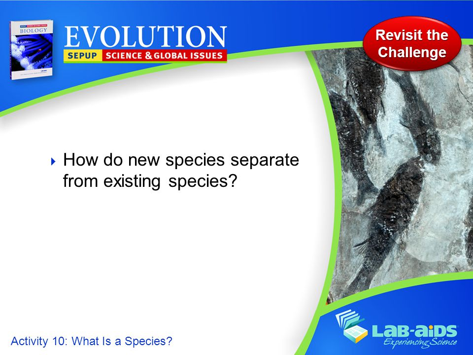 Activity 10: What Is a Species.  How do new species separate from existing species.