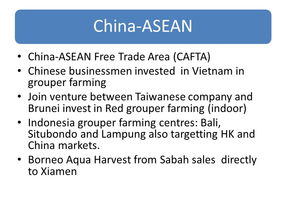 China-ASEAN China-ASEAN Free Trade Area (CAFTA) Chinese businessmen invested in Vietnam in grouper farming Join venture between Taiwanese company and Brunei invest in Red grouper farming (indoor) Indonesia grouper farming centres: Bali, Situbondo and Lampung also targetting HK and China markets.